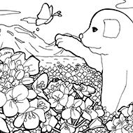 子犬と菜の花